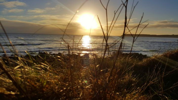 Ocean view - Jamie Pedro