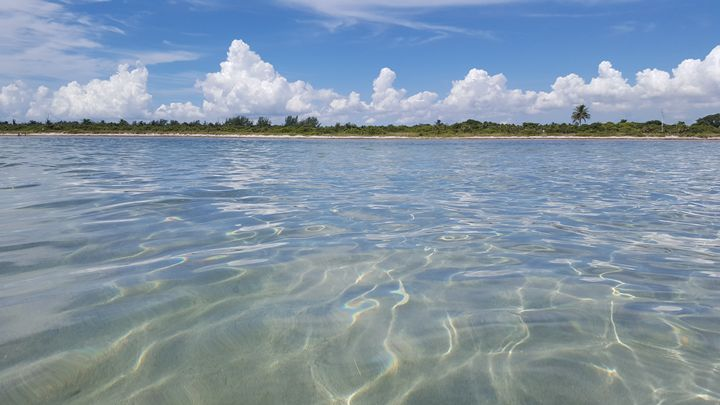 Playa, Brisa y Mar. - Diana Iglesias