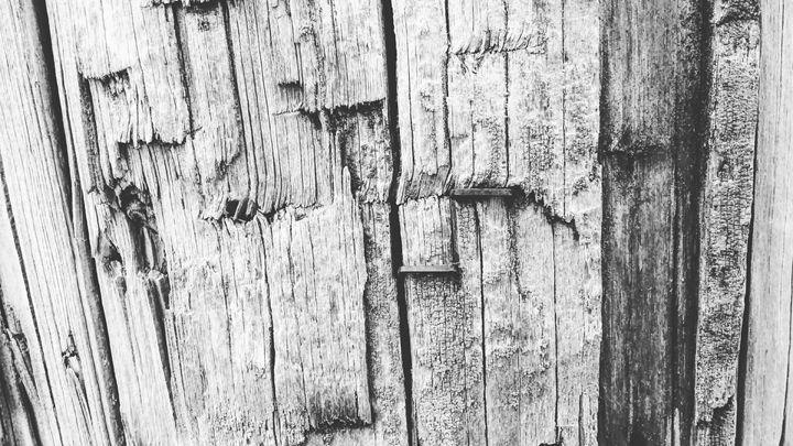 Wood grain 1 - Aroura Abstract Art