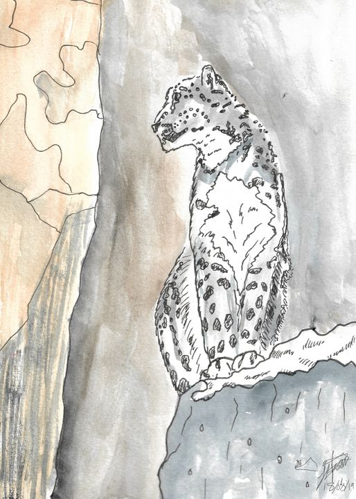 The Snow Leopard - Jacob Eason