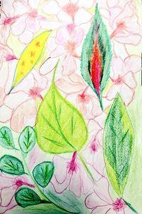 Blooming Bud's