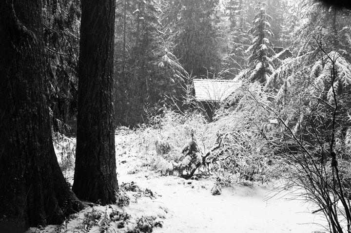 winter alone - raminray