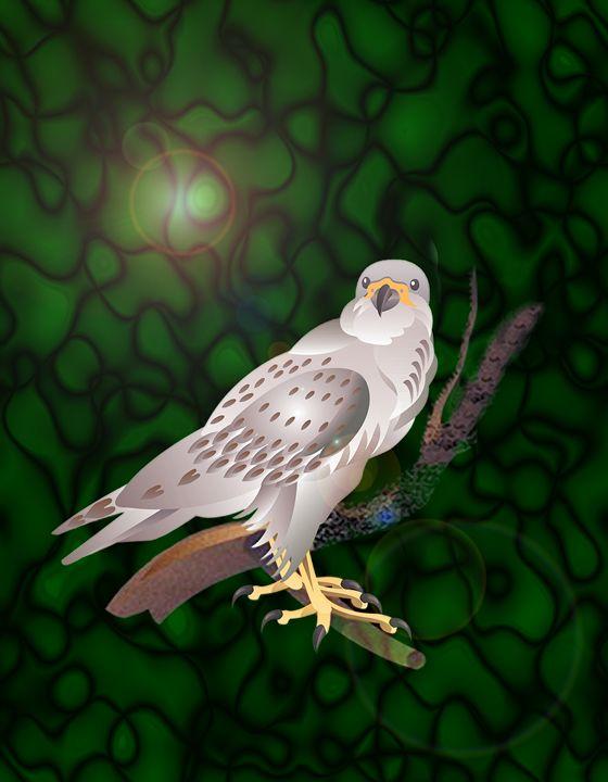Peregrine Falcon on green - DICK GAGE