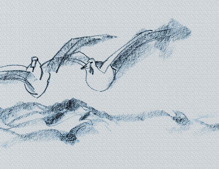 Ducks gliding over ocean - DICK GAGE
