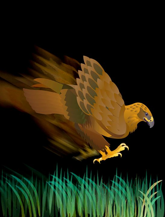 Hawk diving for prey - DICK GAGE