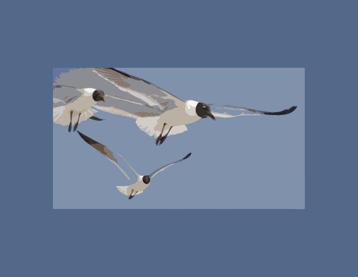 Seagulls in flight - DICK GAGE