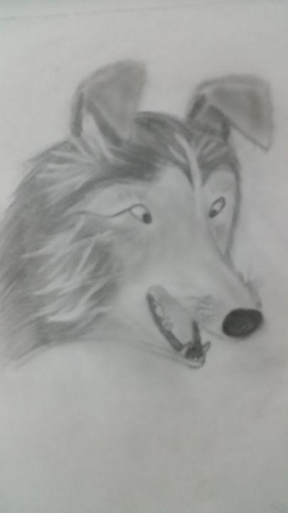Dog -  Jordhandeidrick