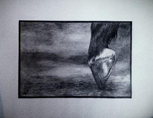 "Horse hoof, pencil, 12""x 8"""
