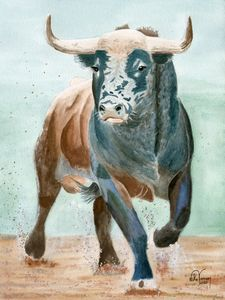 Spanish Bull 1