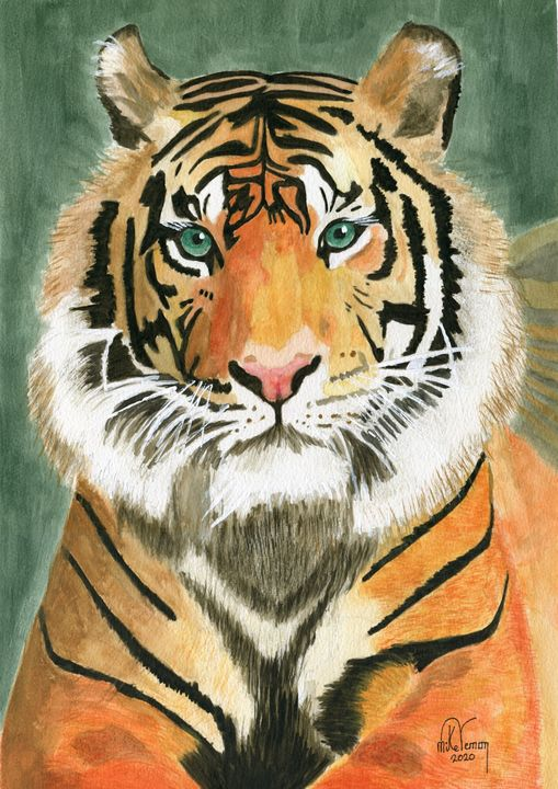 Bengal Tiger - Mike Vernon Art