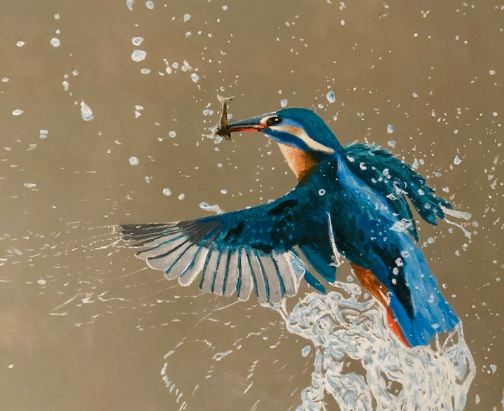 Kingfisher - Mark Stagg