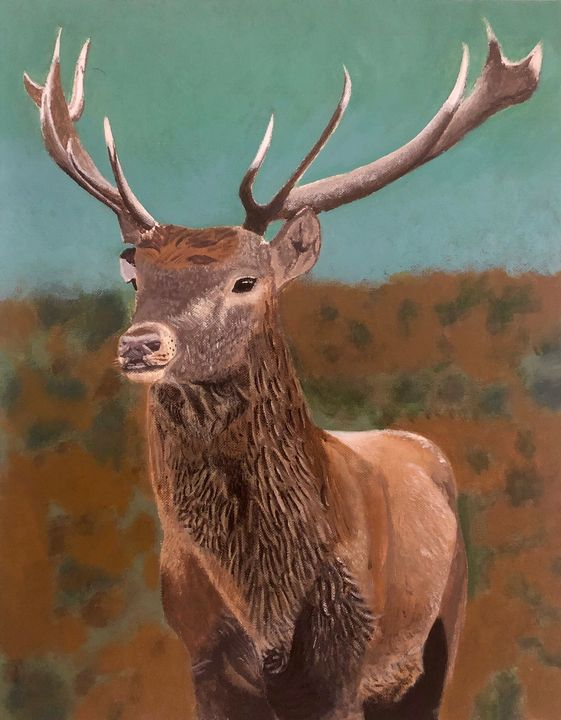 The Stag - Mark Stagg