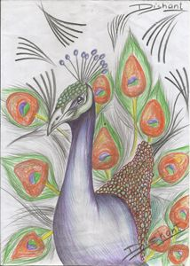 """Incredible Peacock"""