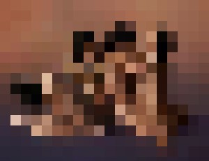 Four Nude Women