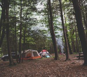 Connecticut campsite