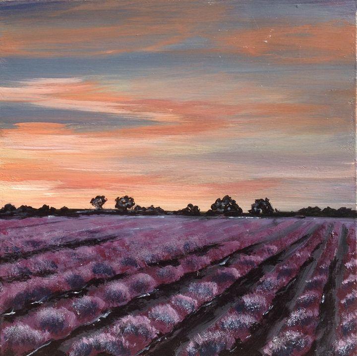 Lavender field - Anna Chernysh