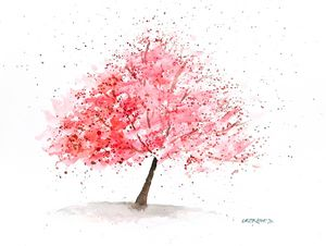 Cherry Tree Watercolor