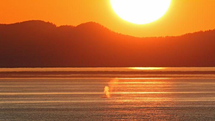 Exhale Daylight - Mike Vanaman Photography