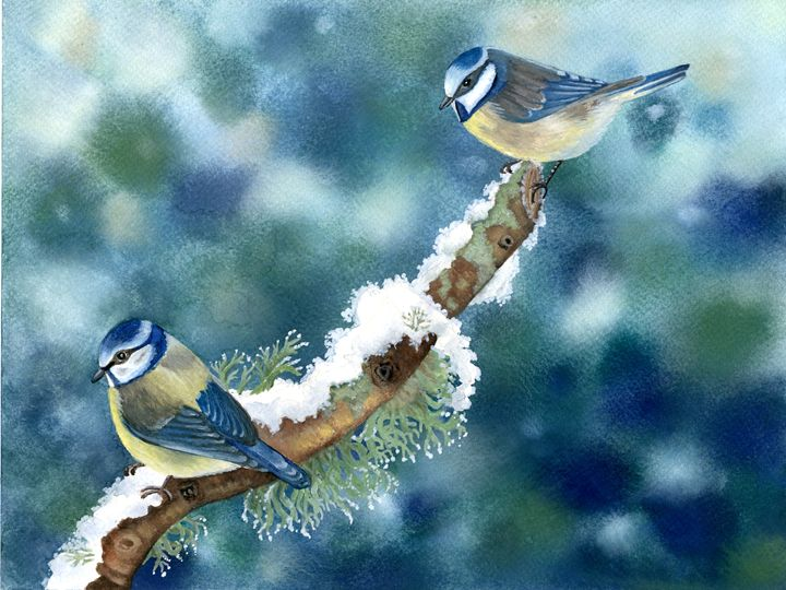 Blue Tits on a Frosty morning - Rebekah's Nature Art