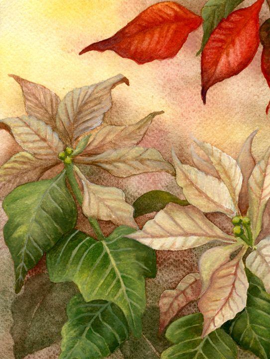 Splash of Holiday Color - Rebekah's Nature Art