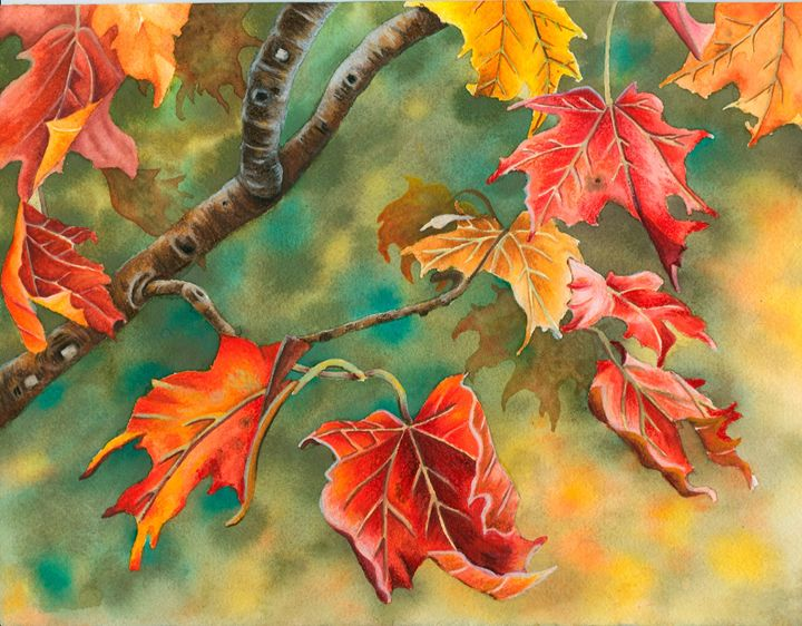 Splash of color - Rebekah's Nature Art
