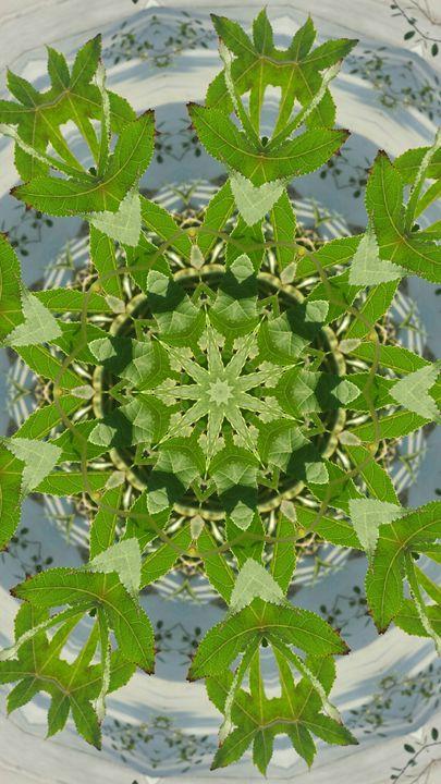Leafy Enneagram - JL Robinson