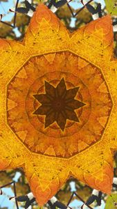 Leafy Kaleidoscope in Gold