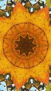 Leafy Kaleidoscope in Gold