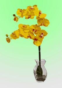 Flower Vase AK