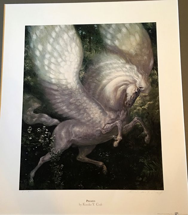 Pegasus - CBelladonnas