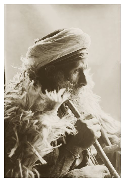 Gebalaiya Bedouin Sheik, Mount Sinai - Images of the Middle East and the Holy Land