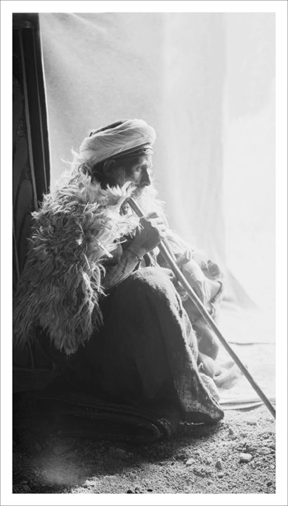 Sheik of the Gebaleya tribe, Sinai - Images of the Middle East and the Holy Land