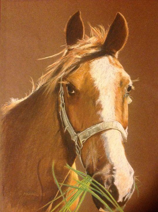 Horse - Michael Maring