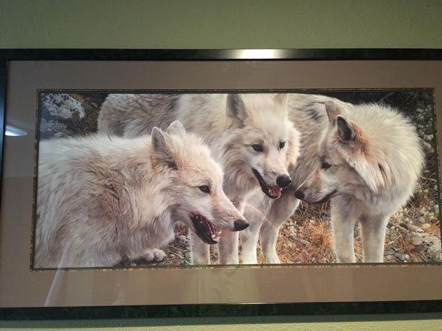 Tundra Summit - ARAN Art