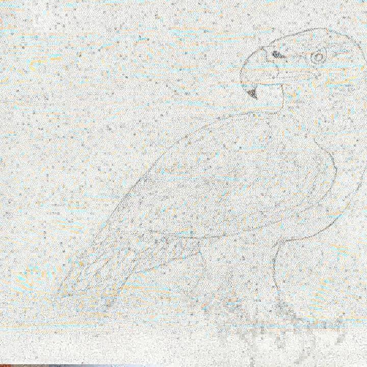 Wild Life - Brokin Lyixx