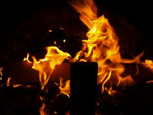Horse in the Fire