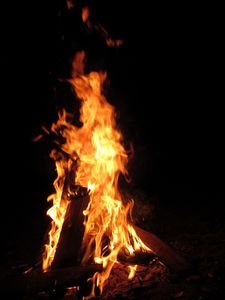 Walking with Walking Stick