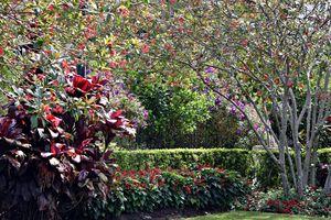 Hollis Gardens