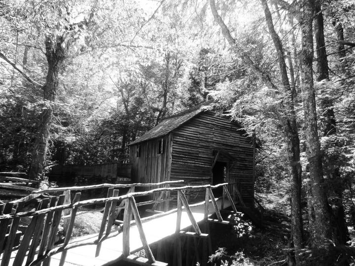 Barn in the Woods - JAJ Photography