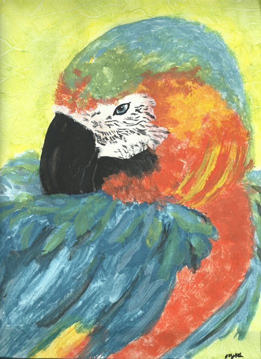 Parrot - Georgios Giagkos