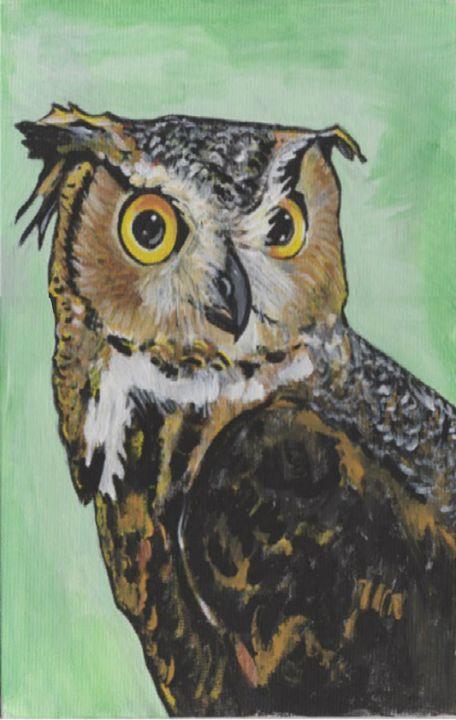 Horned Owl - DMO