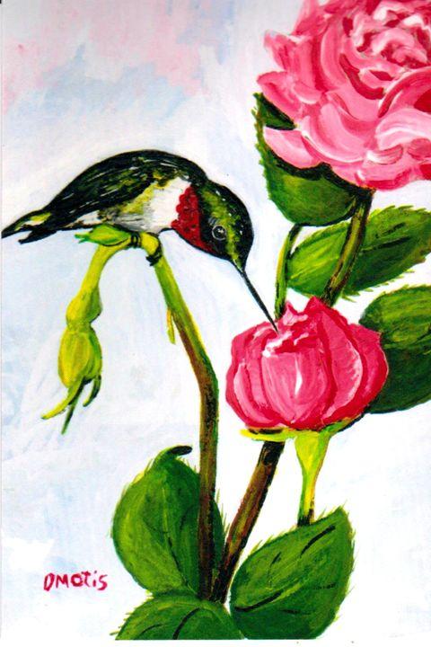 Ruby-throat Hummingbird/Red Rose - DMO