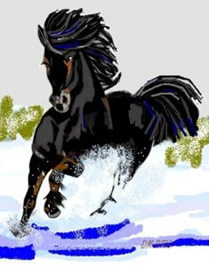 Black Horse Dashing Through Snow