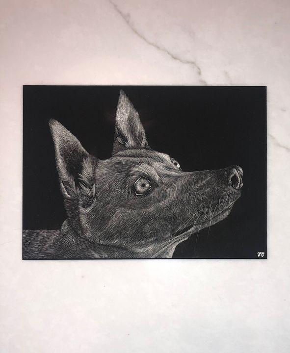Carolina Dog Scratchboard - GEOart
