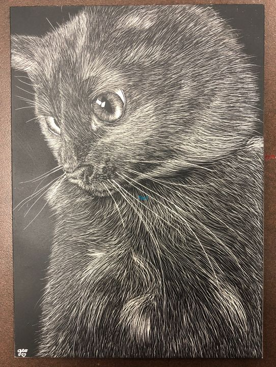Black Cat Scratchboard - GEOart