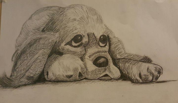 Sad puppy - Syeda Maham Riaz
