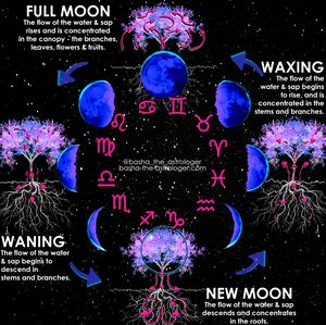 Lunar Phases explained