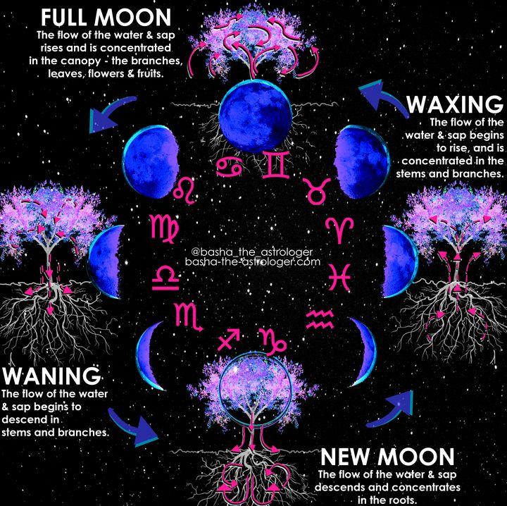 Lunar Phases explained - Basha the Astrologer