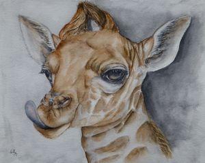 Sassy Little Giraffe