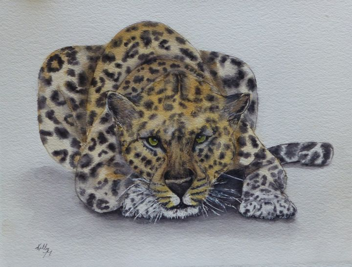 Prowling Leopard - Kelly Mills Paintings